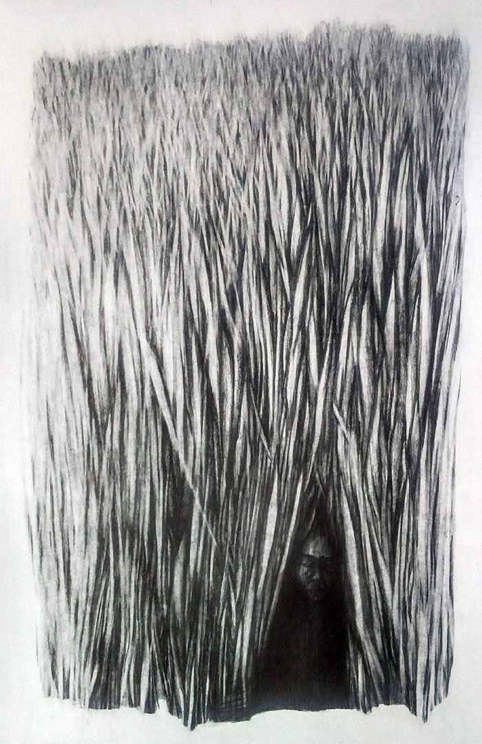 Paria Farrokhi - Untitled